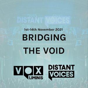 Bridging the Void banner